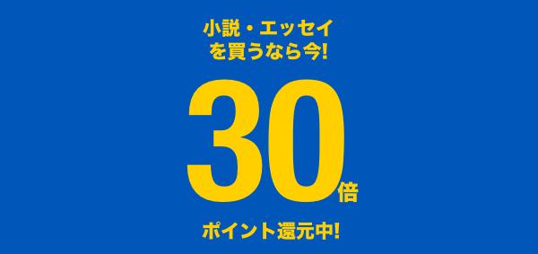 160125-point-novel30.png