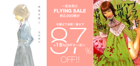 160225-sale-flying87.png